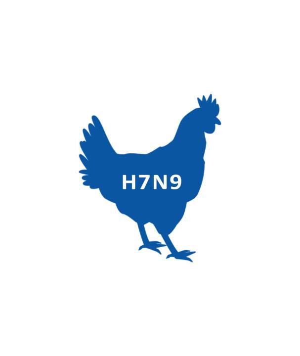 птичий грипп дезинфекция